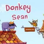 Donkey Sean