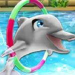My Dolphin Show